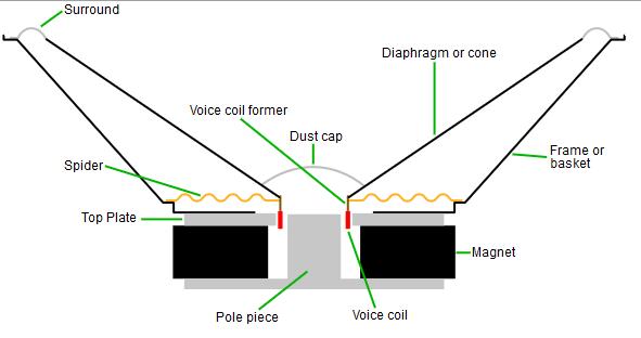 تصویری از ساختار داخلی یک درایور یا بلندگو