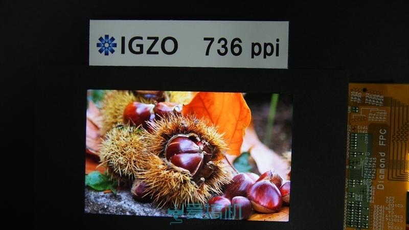 شارپ نمایشگر IGZO با تراکم پیکسلی 736 پیکسل بر اینچ ارایه کرد